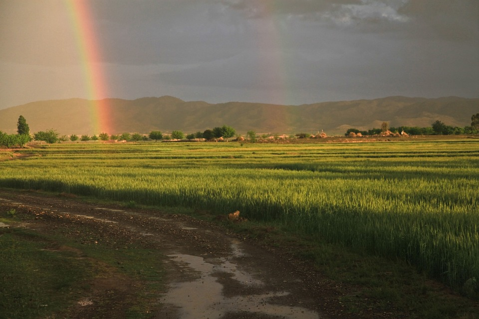 dirt road with mountains in the background and a rainbow