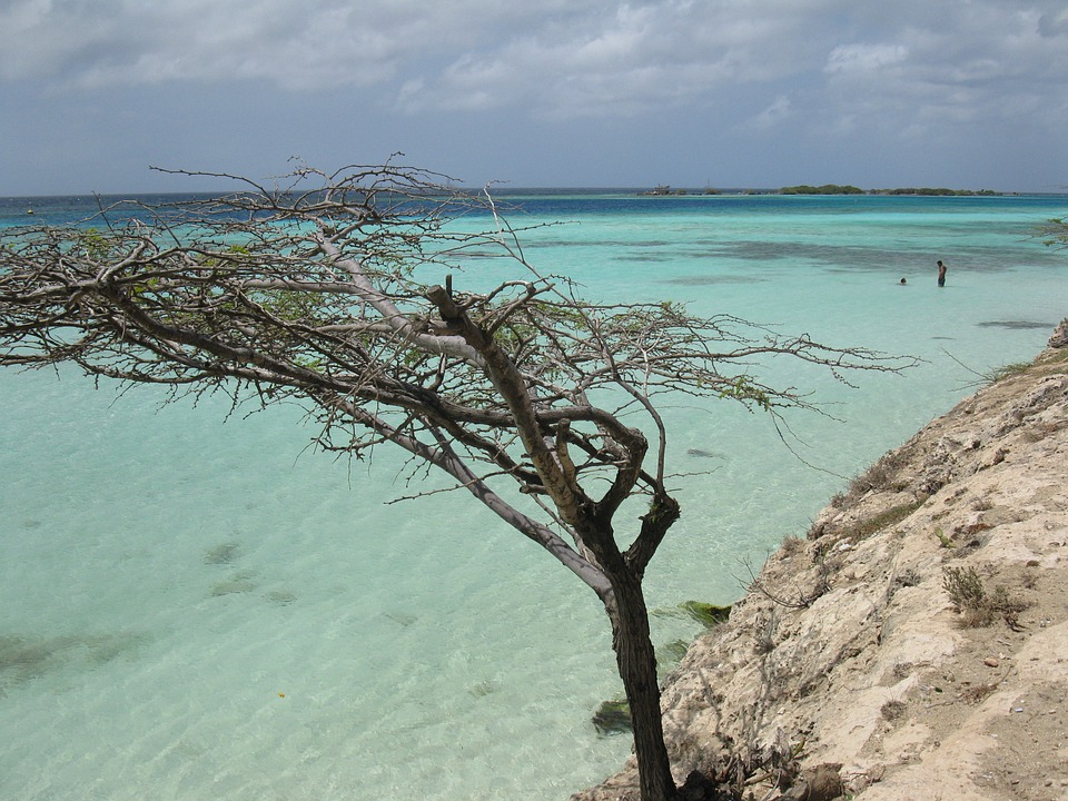 Turquoise shallow water near a beach