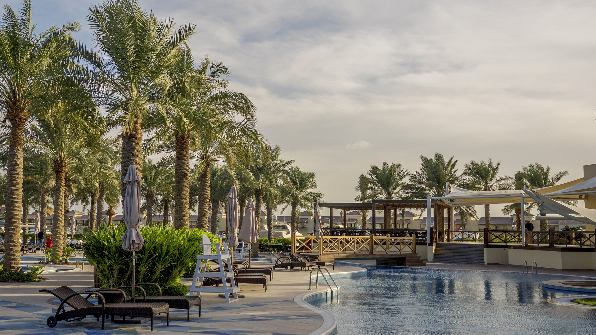 resort swimming pool with palm trees surrounding it