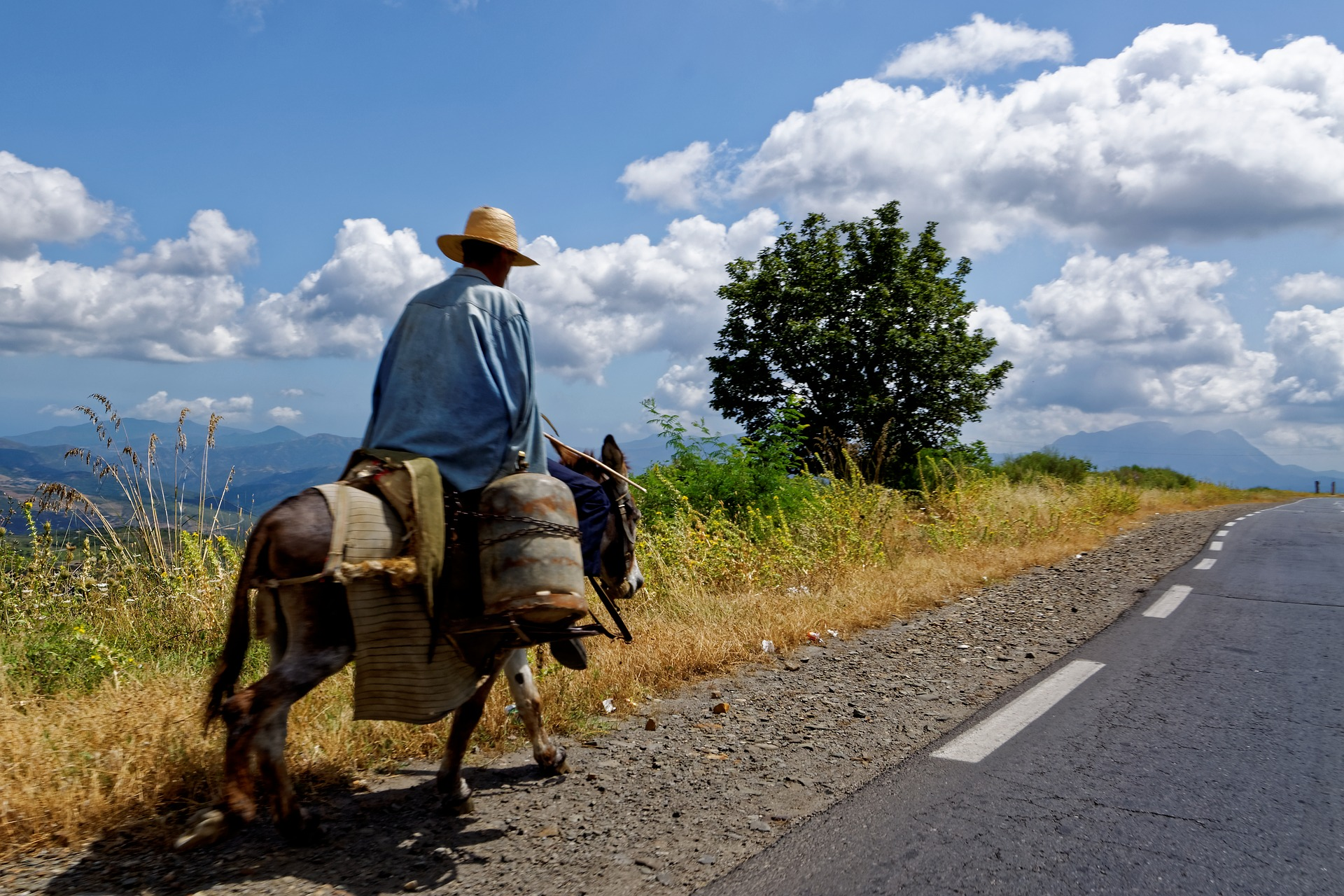 Person riding a donkey on the side of a asphalt road with mountains in the distance