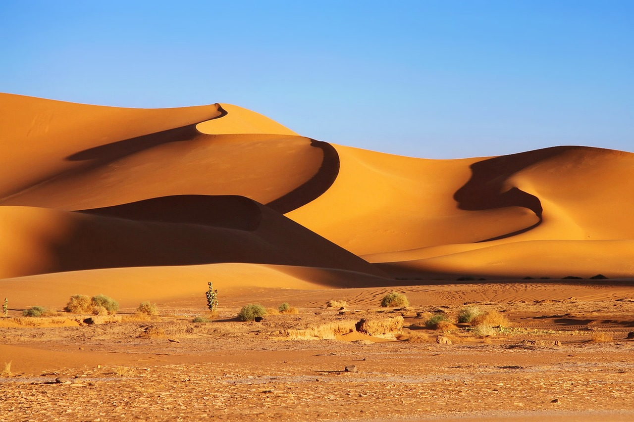 Algerian Sahara with sand dunes in the distance