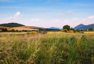 Field at foothills in Navarre Spain